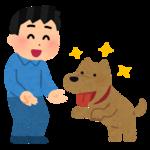 pet_natsukareru_dog_man.png